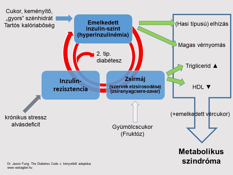 metabolikus szindróma és fogyás hogyan fogyhatok ápolás közben