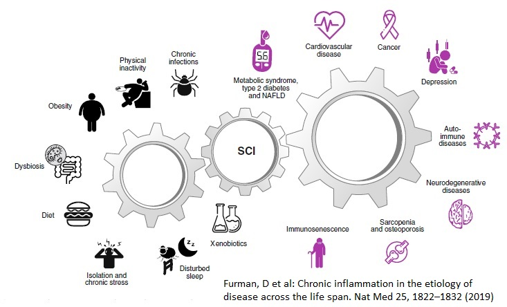 krónikus gyulladás természetes kezelése